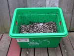 Worm Bin with worms
